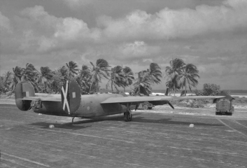 Surrounded by all the trappings of a tropical paradise, a MK VI Liberator idly awaits its next mission.